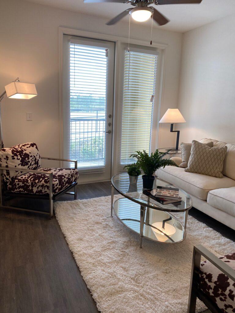 McKinney apartment living room
